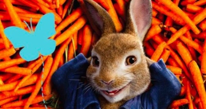 Out About Peter Rabbit Under the Stars